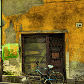 green bike by Andy Beres - Transportation Bicycles ( hungary, budapest, bike, street, rundown, derelict, yellow, 28, wall, bicycle )