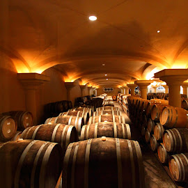 Wine Barrels by Sanjib Paul - Food & Drink Alcohol & Drinks ( wine, california wine, barrels, sonoma, winery )