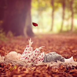 Catch by Chinchilla  Photography - Babies & Children Babies