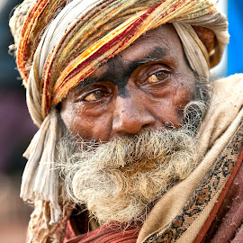 India by Diego Scaglione - People Portraits of Men ( cold, gaze, beard, old man, colours,  )