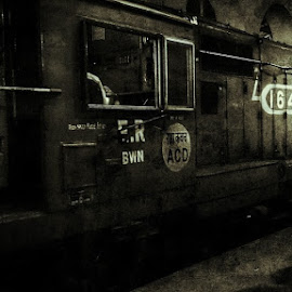 rush by Aakash Kumar - Transportation Trains ( rush, railway, station, indian, man at work, working )