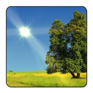 True Weather LWP For PC / Windows 7/8/10 / Mac – Free Download