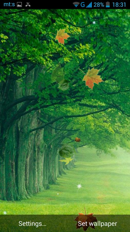 Gambar Desain Rumah Hutan Gontoh