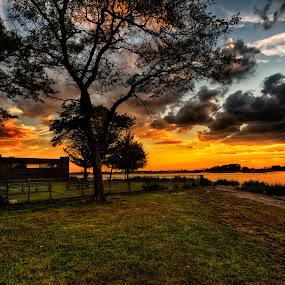 Splendor In The Grass by Linda Karlin - Landscapes Sunsets & Sunrises ( sunset, long island, weather, landscape )