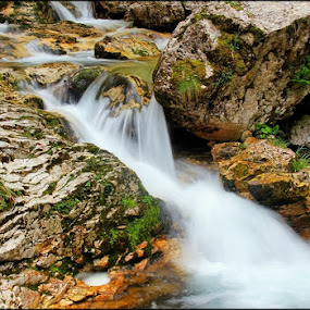 the stream by Ld Turizem - Landscapes Waterscapes