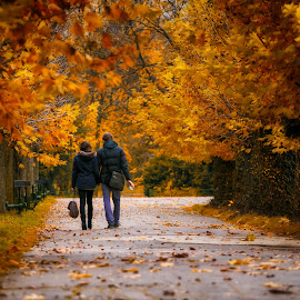 walk by Corneliu Tănasă - City,  Street & Park  Street Scenes ( lovers, street life, park, autumn, street scene, road, walk, people )