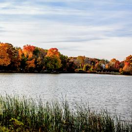 Fall on the lake by Rick Touhey - City,  Street & Park  City Parks ( fall colors, fall, fall trees, herrick lake )