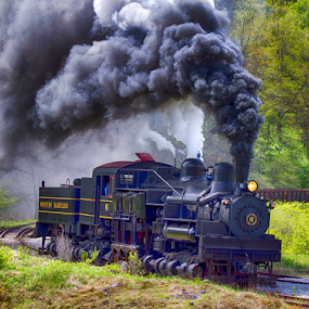 Full Steam Ahead by Donna Neal - Transportation Trains