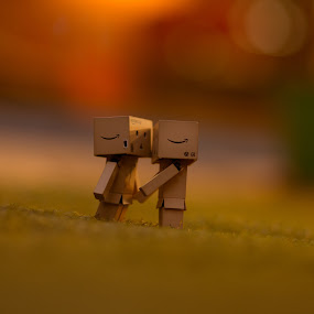 1st Kiss by Sudheer Hegde - Products & Objects Technology Objects ( love, kiss, danbo, sigma, 85mm, d800, nikon, bokeh )