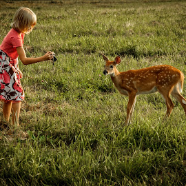 Girl by Shawn Oneill - Babies & Children Children Candids ( child, girl, candids, animal, deer )