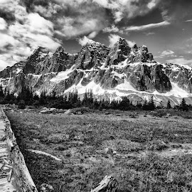 Tonquin Valley by Kaye Mendoza - Novices Only Landscapes ( fuji x, paths, backcountry camping, canada, black and white, tonquin valley, jasper, travel )
