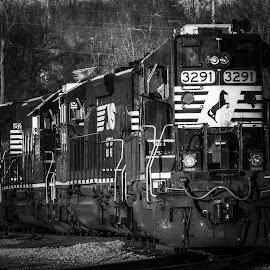 Horse Power by Bridgette Dorsett - Transportation Trains ( railroad, rail yard, train,  )