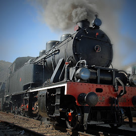The steam train by Antonio Amen - Transportation Trains ( blue, power, train, machine, steam )