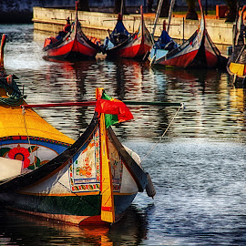 On Portugues waters by Dominique Abreu - Transportation Boats ( aveiro, transportation, boat, portugal, river )