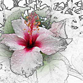 Flor by Lia Ribeiro - Digital Art Things