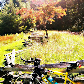 Ride the Parkway by Mary Kaye Zugelder - Sports & Fitness Cycling ( camping, autumn, road riding, blue ridge parkway, virginia,  )