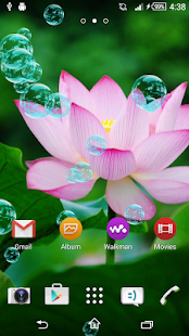 How to get Lotus Live Wallpaper 3.1 apk for laptop