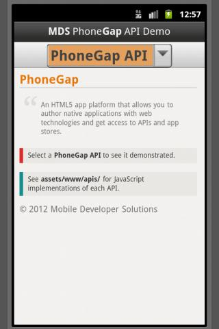 PhoneGap API Demo by MDS