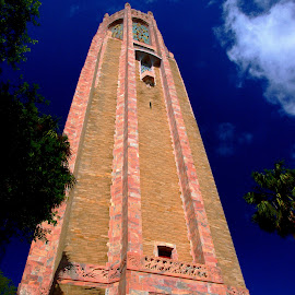 Bok Tower by Diane Plevelich - Buildings & Architecture Statues & Monuments