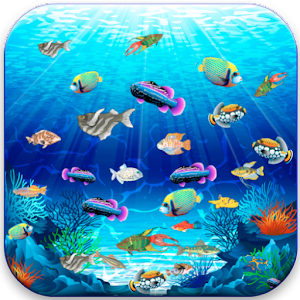 Game fish tank a game for kids apk for kindle fire for Fish tanks for kids