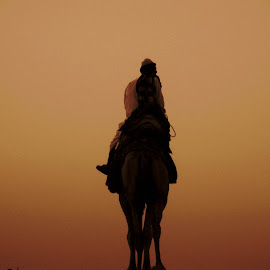 A man with his money making machine by Vidit Singhvi - Animals Other ( camel, life, desert, survive, man,  )