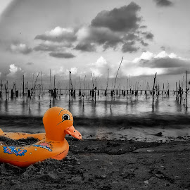 Yellow by Daniel Chang - Artistic Objects Toys ( selective color, pwc )