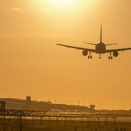 Landing into the sun by Liam Coburn Dunne - Transportation Airplanes ( orange, airport, landing, plane, nikon d800, silhouette, sunset, runway, barcelona, nikon 70-200, sun )