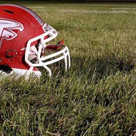 Falcon Football Helmet by Shelly Evilsizor - Sports & Fitness American and Canadian football ( #footballfield, #sport, #loveofthegame, #highschool, #football, #footballhelmet )