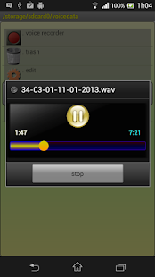 PCM Voice Memo Recorder Pro - screenshot
