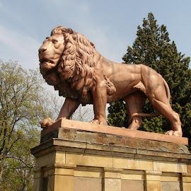 Lion guard on Zbiroh by Renata Horáková - Buildings & Architecture Statues & Monuments