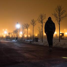 Alone by Silviu Suciu - City,  Street & Park  Night ( lights, dark, night, landscapes, nightscape )