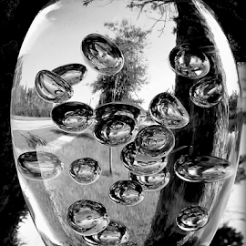 A study in black and white by Elfie Back - Artistic Objects Glass ( glass art, black and white, bubbles,  )