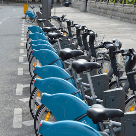 Dublin Bike Rentals by Michael Hourigan - Transportation Bicycles ( rentals, blue, bikes, dublin, row,  )
