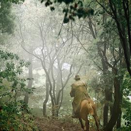 Rider in the autumn mist ... by Dimitar Pavlov - Uncategorized All Uncategorized ( rider )