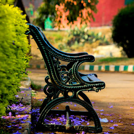 Waiting for You by Naresh Kumar - Artistic Objects Furniture ( bangalore, lalbagh )