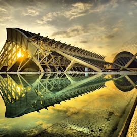 Ágora via Museo de las Ciencias at Dawn by Dark Reid - Buildings & Architecture Public & Historical ( clouds, museo de las ciencias, reflections, ágora, valencia, spain,  )