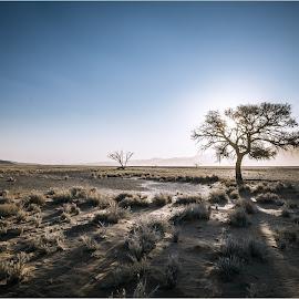 Dry Summer by André Norris - Landscapes Deserts
