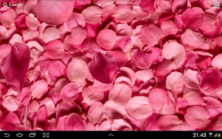 Screenshot of Petals 3D live wallpaper