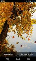 Screenshot of autumn river live wallpaper
