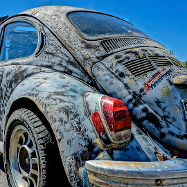 VW Original by Barbara Brock - Transportation Automobiles ( vw beetle, old vw bug, volkswagen )