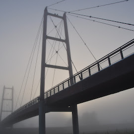 Bridge in fog by Teo Niklus - Buildings & Architecture Bridges & Suspended Structures ( suspension bridge, fog, bridge, morning, mist )