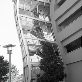 Warped Way by Aaron Allgrunn - Buildings & Architecture Other Exteriors ( warped, glass wall, black and white, arcitecture, curves )