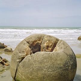 Moeraki Boulders by Marion Metz - Nature Up Close Rock & Stone ( shore, sea, ocean, moeraki boulders, rocks, new zealand )