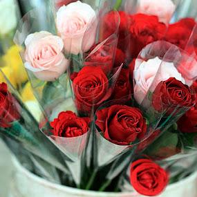 by Yuliani Liputo - Flowers Flower Arangements ( bouquet, pwc-122, flower )