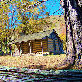 old pioneer cabin by Delores Mills - Buildings & Architecture Public & Historical