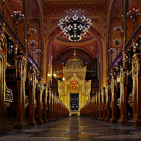 Budapest Synagogue by Wilson Beckett - Buildings & Architecture Places of Worship (  )