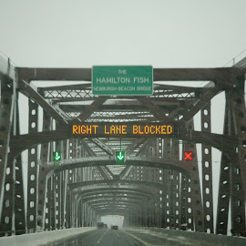 blizzard on the bridge by Alec Halstead - News & Events Weather & Storms ( , snow, winter, cold )