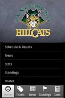 Screenshot of Lynchburg Hillcats