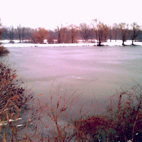 Frozel Lake by Nat Bolfan-Stosic - Uncategorized All Uncategorized ( winter, cold, fish, lake, frozen )