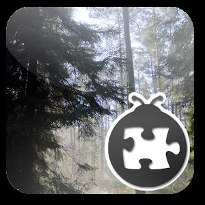 Cover art Lightning Bug - Forest Pack
